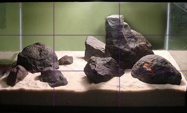 tailsnteeth-hardscape-vs-aquascape-element-depth-rule-of-thirds